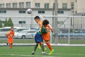 JFA第43回全日本U-12サッカー選手権大会新潟県大会