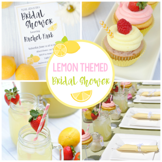 Summer Bridal Shower Theme