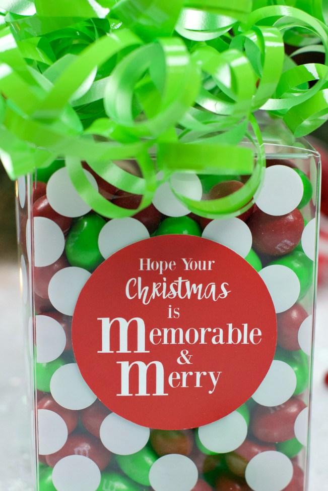 Cute M&M Christmas Gift Idea