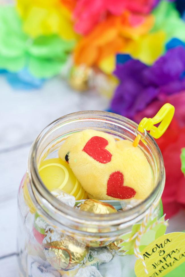 Cute Birthday Gift Idea for Friends