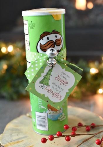 Funny Christmas Gift Idea