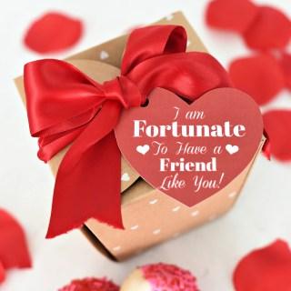 Fun Valentine's Day Gift Idea