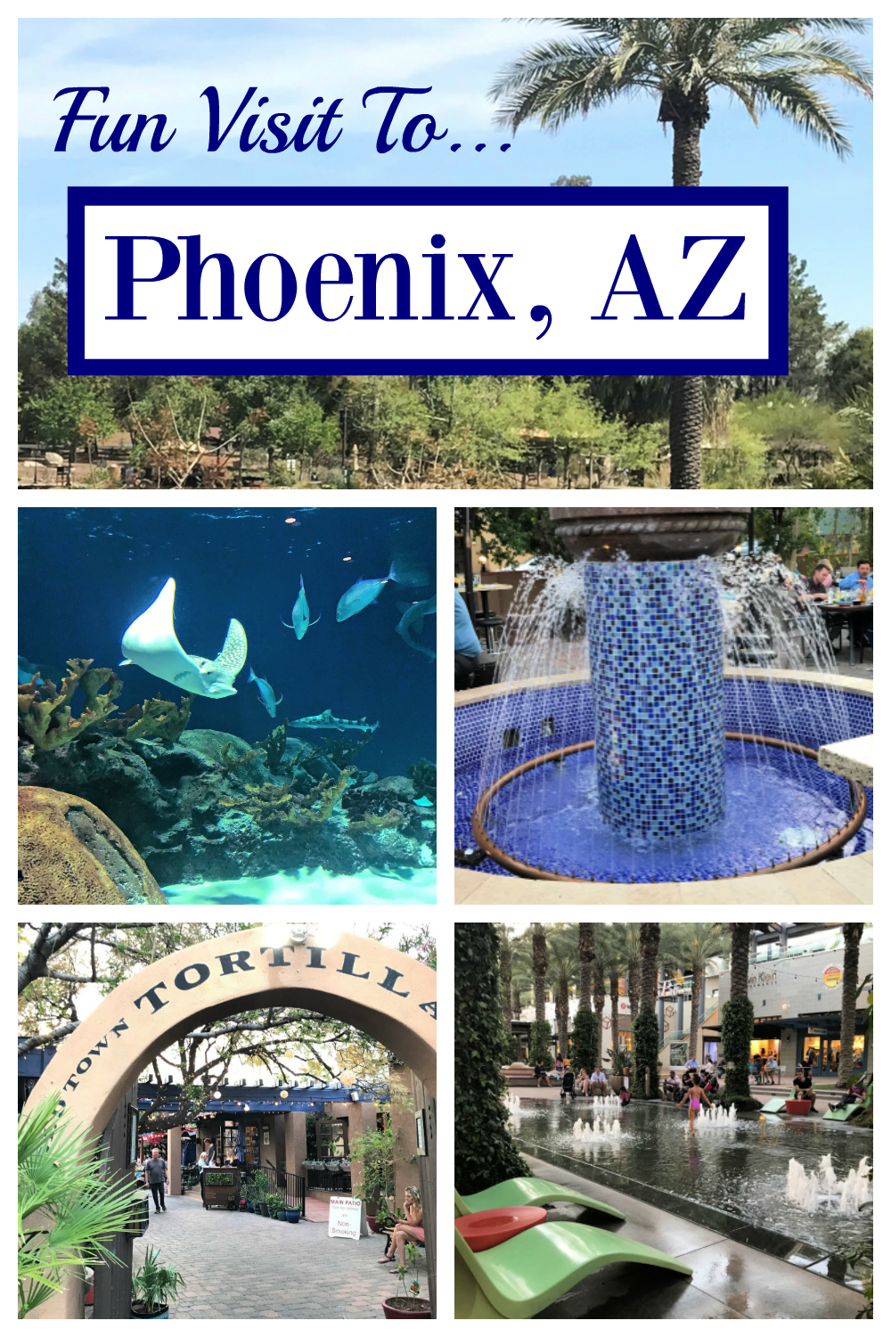 Fun things to do in Phoenix! Plan the perfect Phoenix vacation for your family! Fun vacation tips and tricks. #phoenix #phoenixvacation #funvacationforkids #kidsvacation #phoenixwithkids