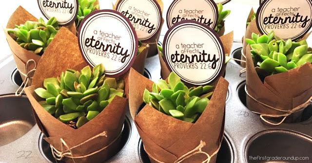 Plant Gift for Teachers