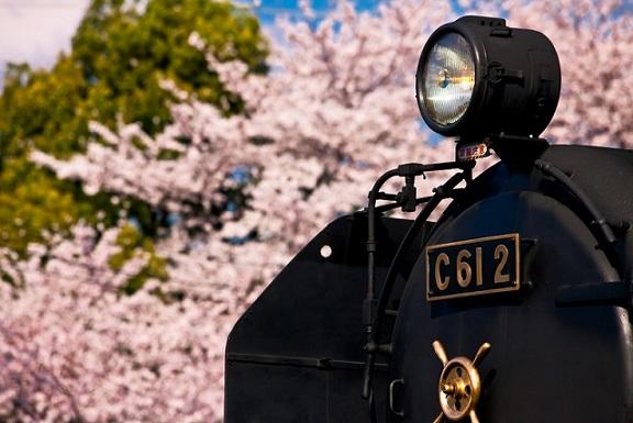 親子で楽しむSL列車に乗れる路線12選!