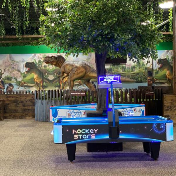 Arcade-D