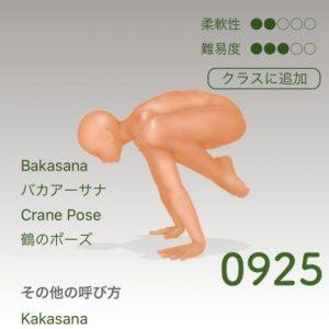 鶴のポーズ