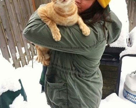Cat's First Experience With Snow