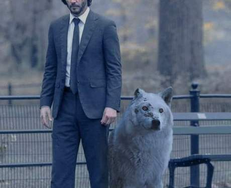 John Wick is coming for John Snow. Do not abandon your dog.