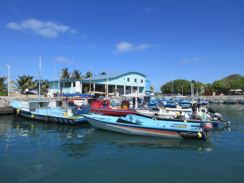Hafen und Fischmarkt Fuvahmulah