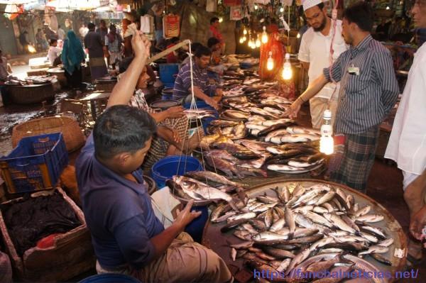 Mercado de peixe em Dhaka