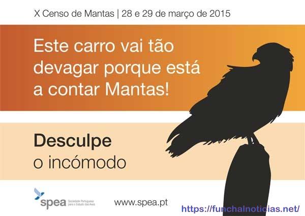 distico2015_mantas
