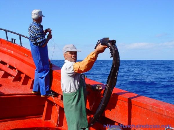(Foto Direção Regional de Pescas)