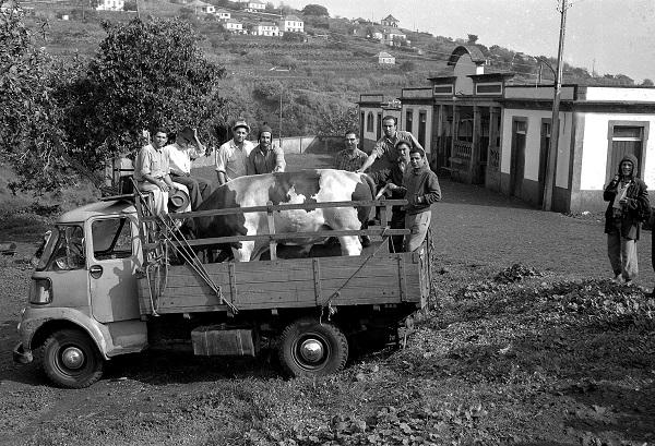 Praça do Caniço - Matadouro - 1967