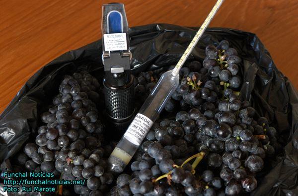 viticultores03