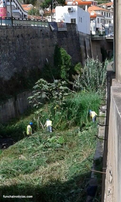 limpeza ribeira de S. João 1