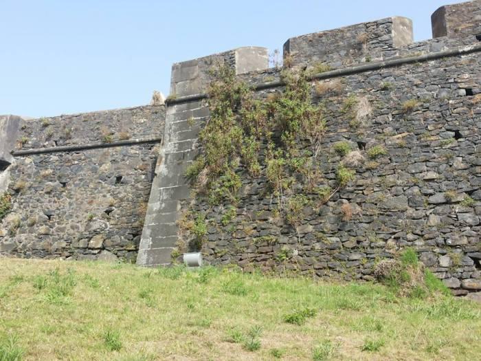 Fortaleza do Pico muralhas erva