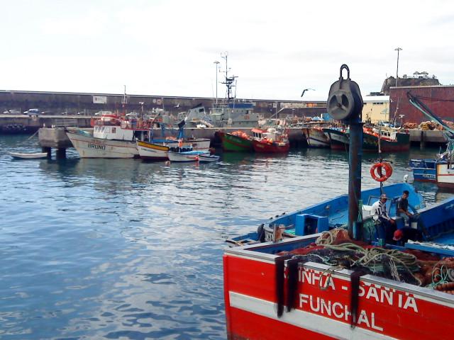 pescas barcos lota