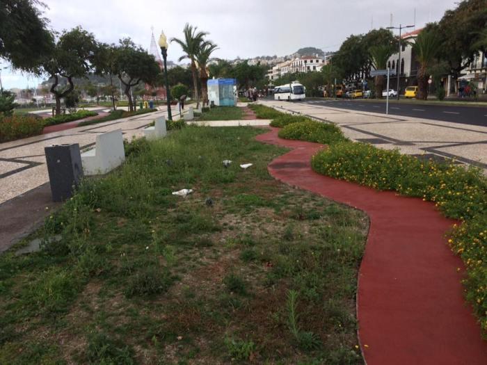 Foto Raimundo Quintal- Jardim Sul da Avenida do Mar