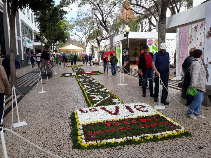 Festa da Flor 2018 C
