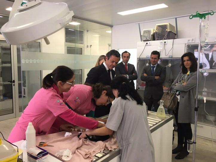 Pedro Calado hospital veterinário
