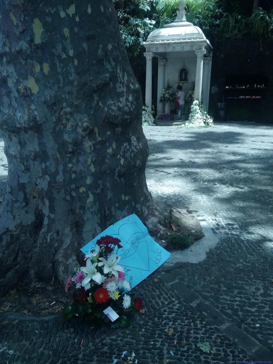 """Uma """"dor de morte"""" expressa em flores e um cartaz à vista do arraial do Monte"""