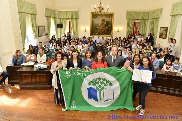 bandeira verde 2