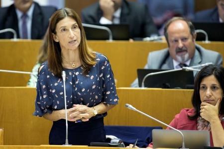 Susana Goulart