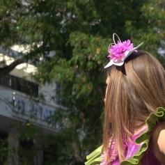 festa-flor-2019-078