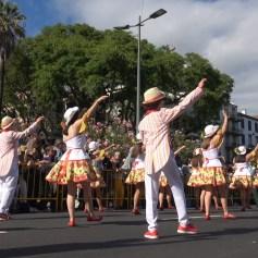 festa-flor-2019-123