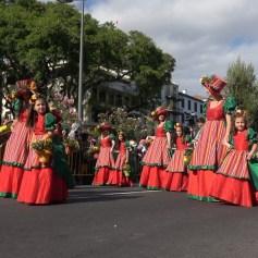 festa-flor-2019-127