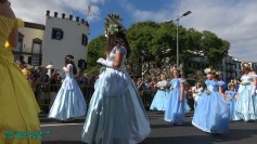 festa-flor-2019-139