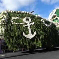 festa-flor-2019-153