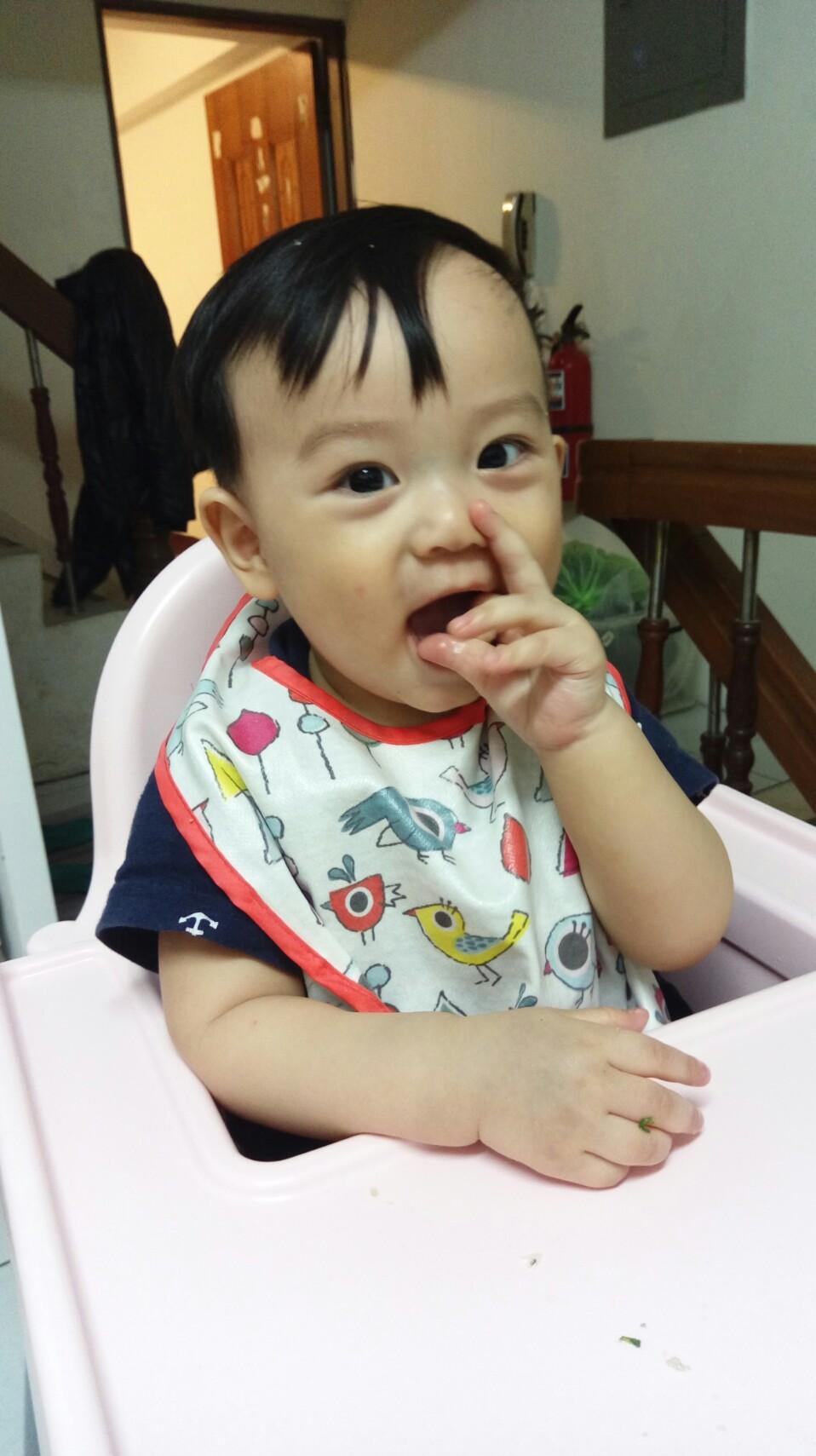 寶寶主導式餵食