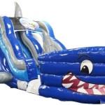 Shark 1aaa