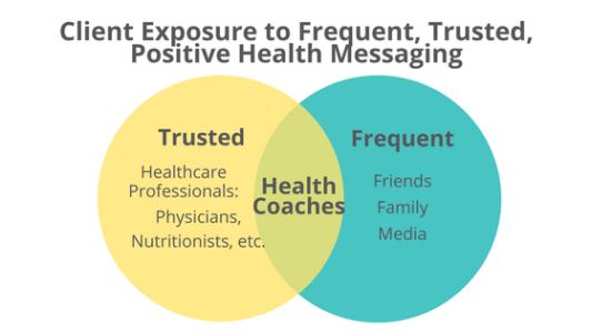 health coach job description