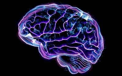Sobre enfermedades cerebrales (II): Hipoxia cerebral