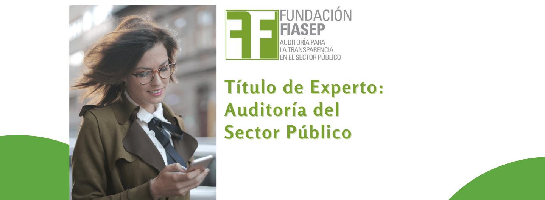 Título de Experto en Auditoría del Sector Público