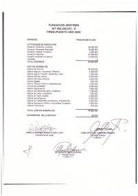 Estados financiero y balances 2019_page-0008