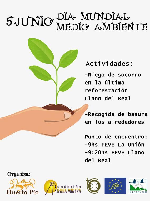 Actividades Día Mundial del Medio Ambiente