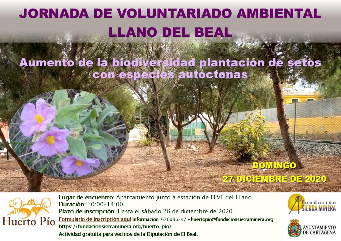 Por un Llano del Beal más verde: Jornada de voluntariado ambiental