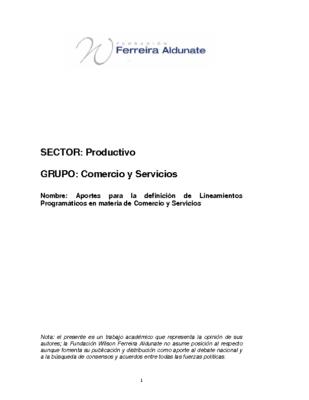 Aportes para la definición de Lineamientos Programáticos en Comercio y Servicios