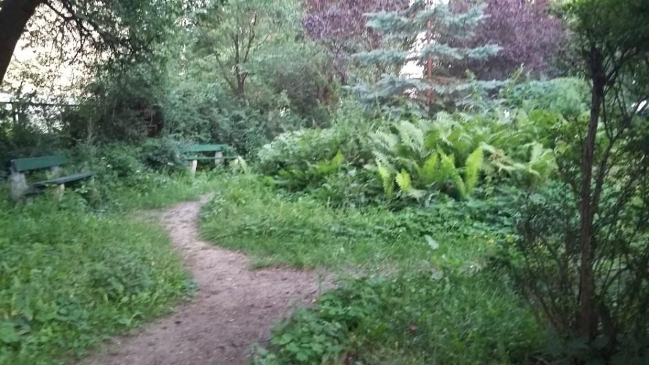 ogród społeczny-propozycja miejsca w Gdyni