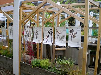 wystawa prac plastycznych w ogrodzie społecznym
