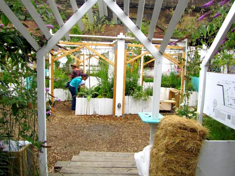 grządki i skrzynie w ogrodzie społecznym