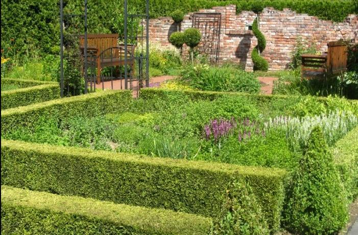 ogrody kapias - płotki z żywopłotów