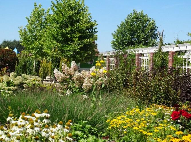 ogrody kapias - byliny na rabacie