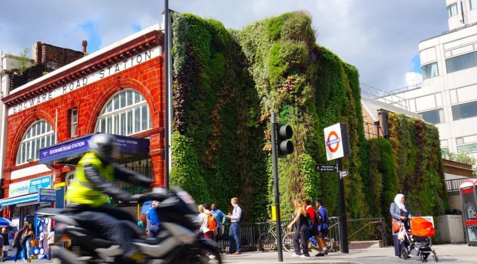 zielon ściana na stacji metra w londynie