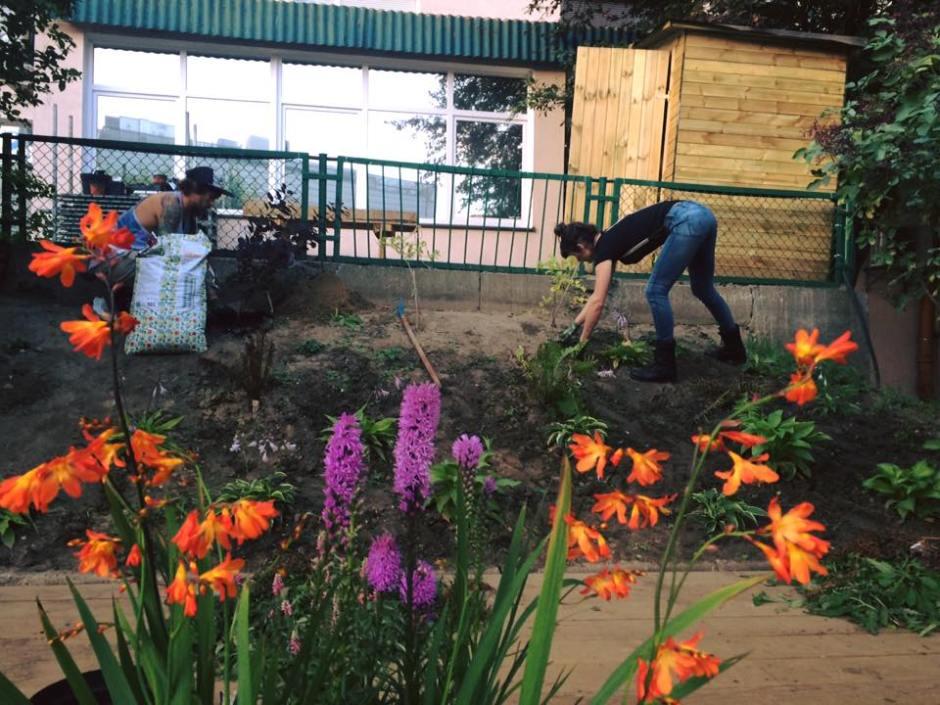 sadzenie kwiatów i krzewów w ogrodzie