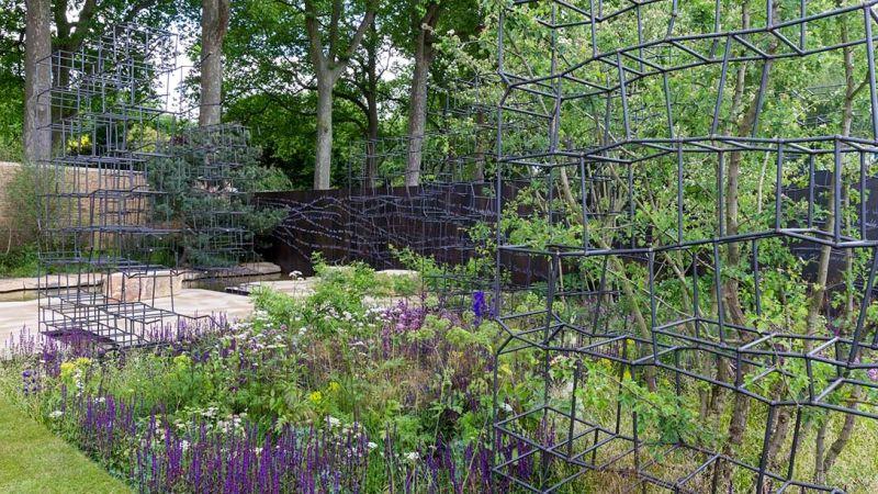 zdjęcia ogrodu - żelazne drabinki